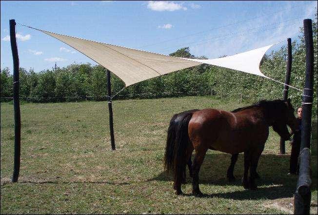 Heste shelter af solsejl